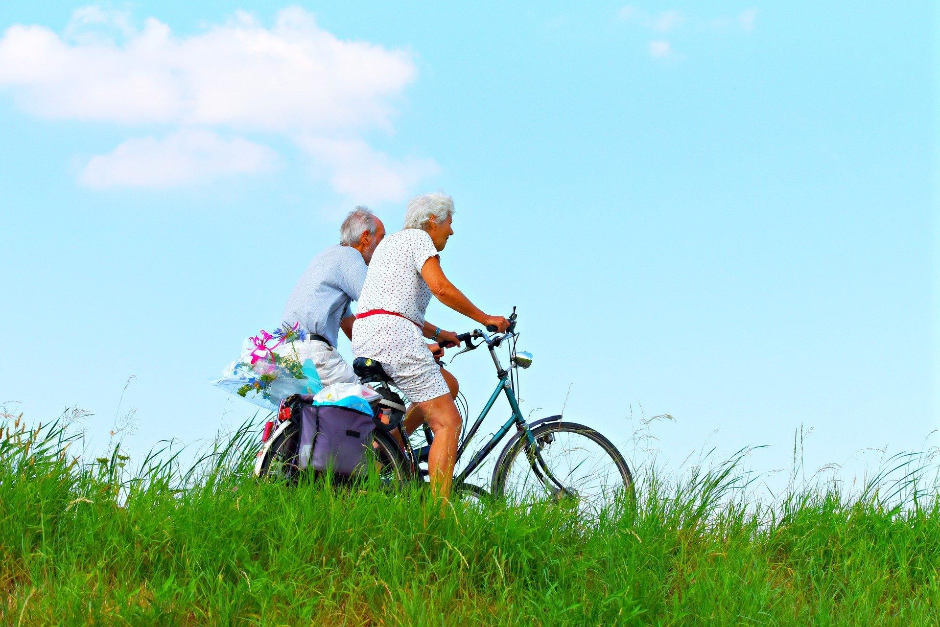 pensión básica solidaria por vejez